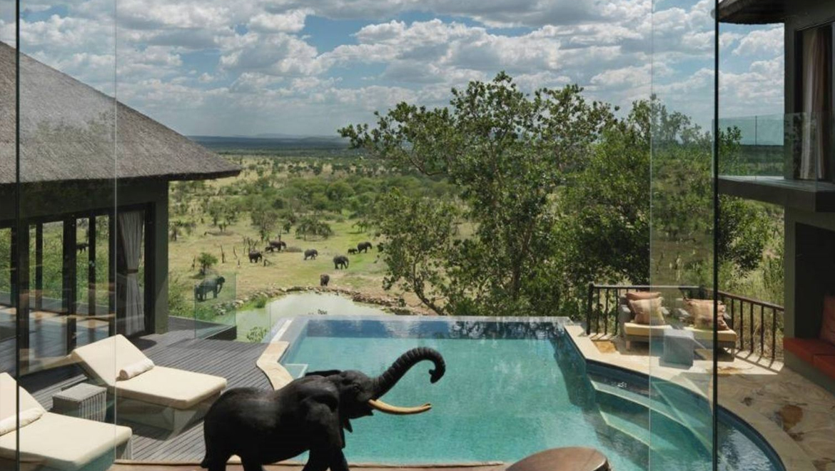 Four Season Safari Lodge
